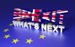 Brexit. What's Next?