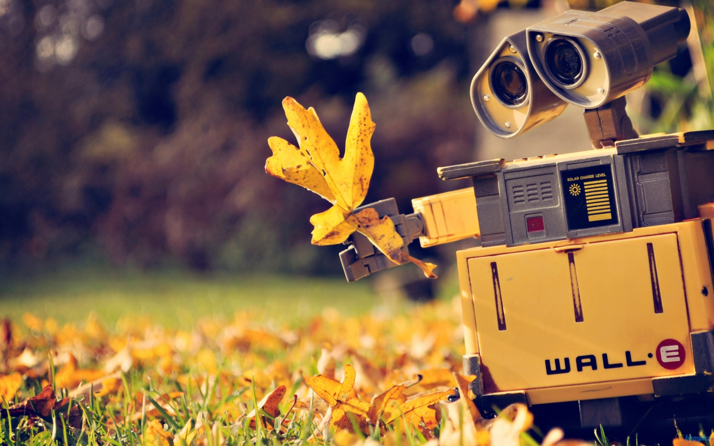 Cute Wall-E Wallpaper